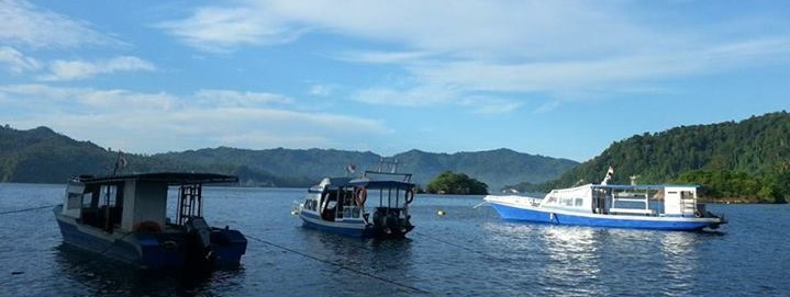 Dive & Stay Luxury Resort in Lembeh Strait