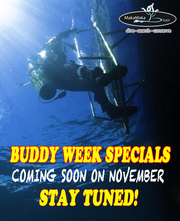 Buddy Week Specials, DIVE LEMBEH